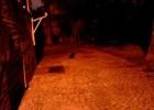 Czarny kot przebiegł drogę...