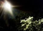 Dziwne światła zewsząd...