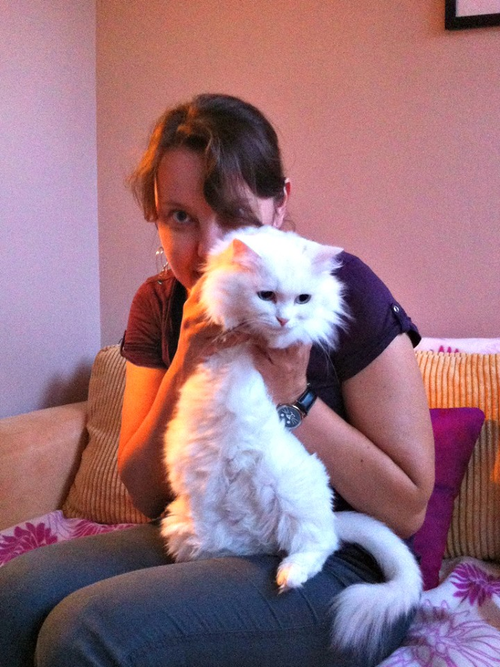 W momentach, gdy niezabezpieczone jeszcze okno jest otwarte do pomiarów i przymiarek, trzeba pilnować koty!