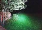 Przemykające w świetle latarki ciachnięte już wcześniej koty.